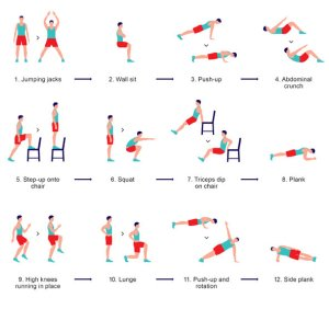 Body weight exercises from the 7min workout - not a bad place to start. (http://well.blogs.nytimes.com/2013/05/09/the-scientific-7-minute-workout/)